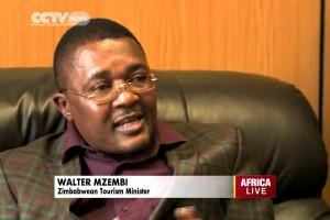"Zimbabwe to Construct Africa's ""Disneyland"""