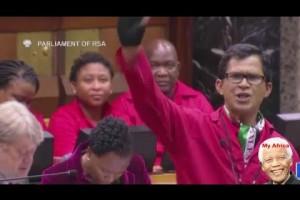 EFF member Paulsen gives Deputy Speaker the middle finger