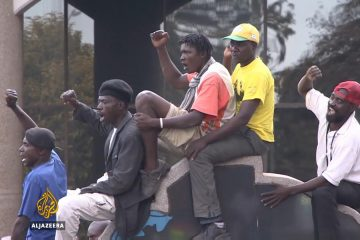 Mugabe's supporters rally against Zimbabwe protests (Video)