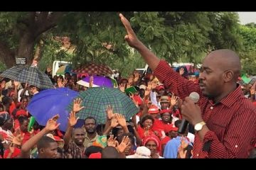 This struggle is not about positions – Nelson Chamisa