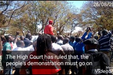 NERA demonstration in Harare (Video)